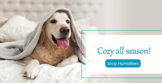 Cozy all season! Shop humidifiers
